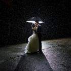 비오는 날 밤길에서... by hint