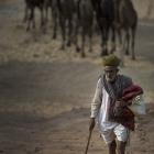인도 푸쉬카르 낙타축제 by 청솔